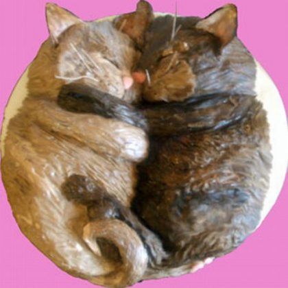 Кошачьи торты