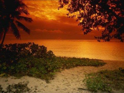 Пляжи, волны, закаты