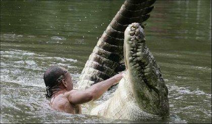 Как подружиться с крокодилом