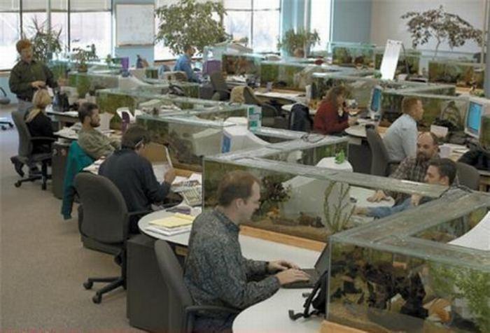 Русское порно на работе и в офисе