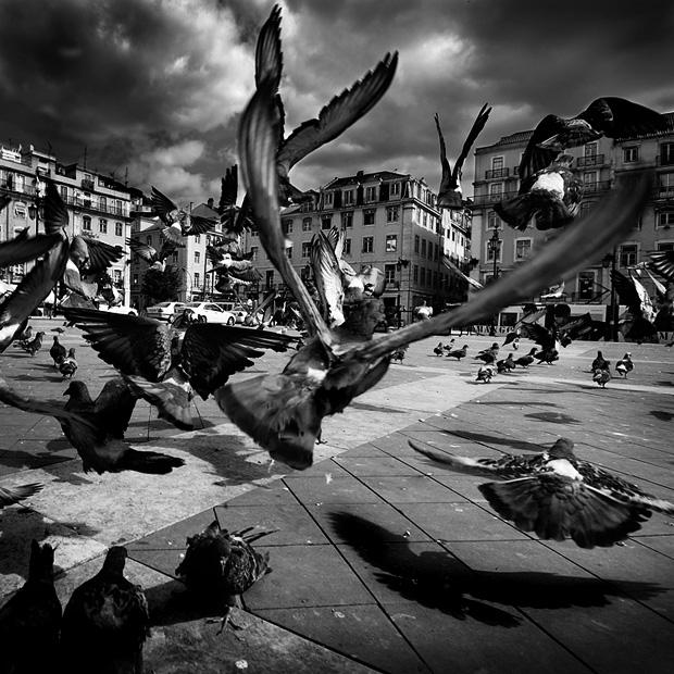 Венеция красивые картинки и фото