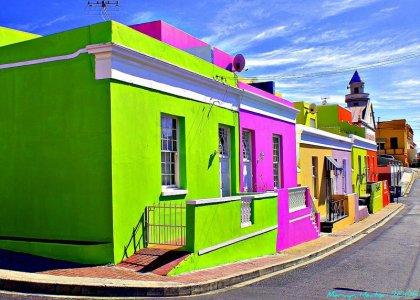 Цветные дома