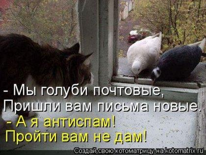 Прикольные котоматрицы