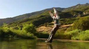 Сумасшедшие прыжки в воду