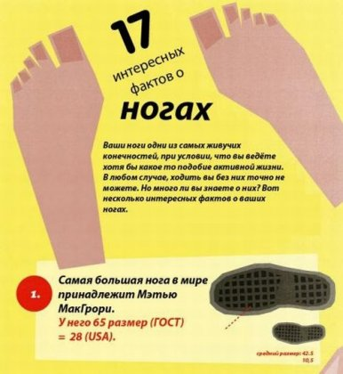 Факты о ногах
