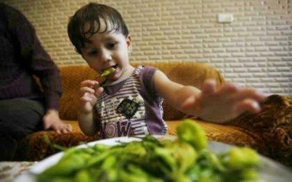 Самый молодой в мире поедатель острого перца