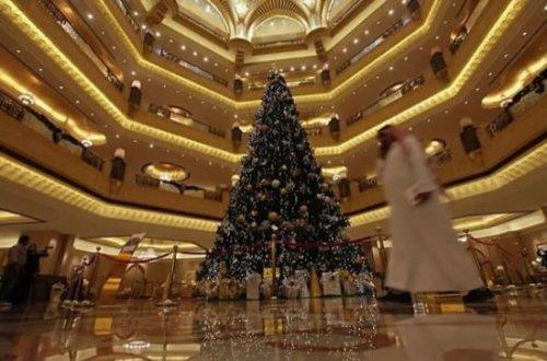 7 оригинальных новогодних елок 2010 года