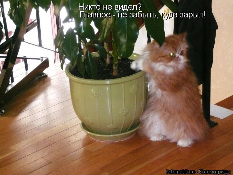 http://www.bugaga.ru/uploads/posts/2011-01/1294987283_prikol-5.jpg