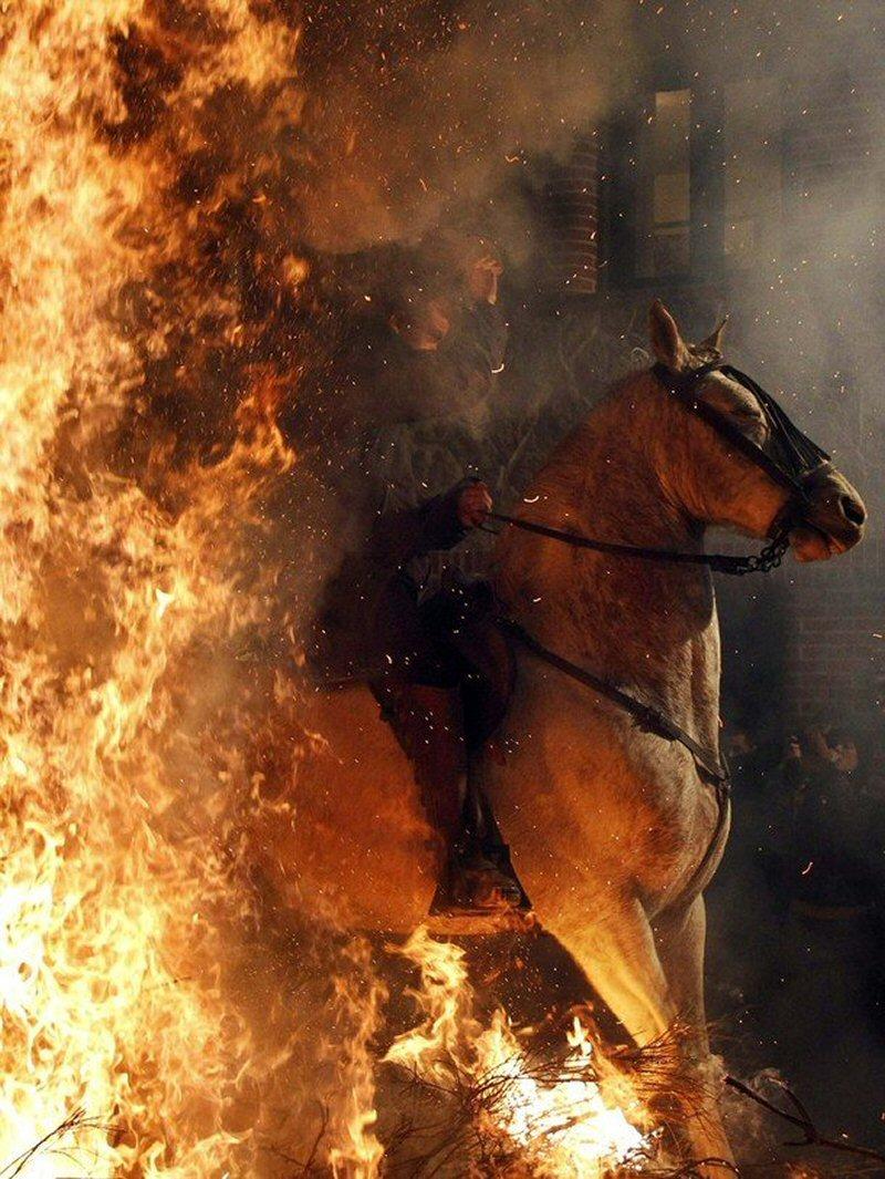 Картинка с женским днем с конем и горящей избой, надписями приехали открытки