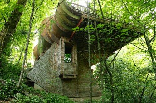 Дом-дерево от архитектора Роберта Харви Ошэза