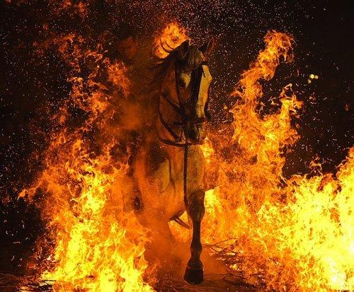 В День Святого Антонио очищаются огнем