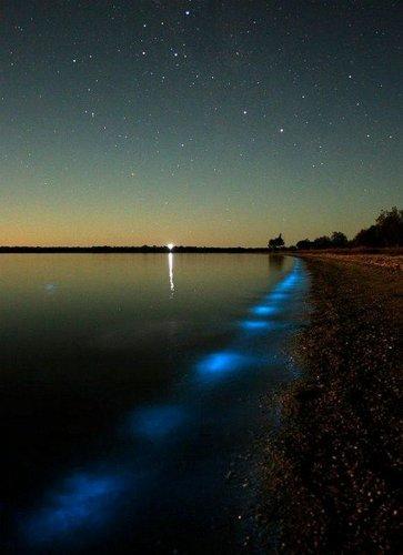 Неоновое озеро