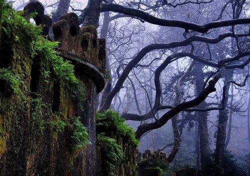 Красивые пейзажи от Paulo Flop