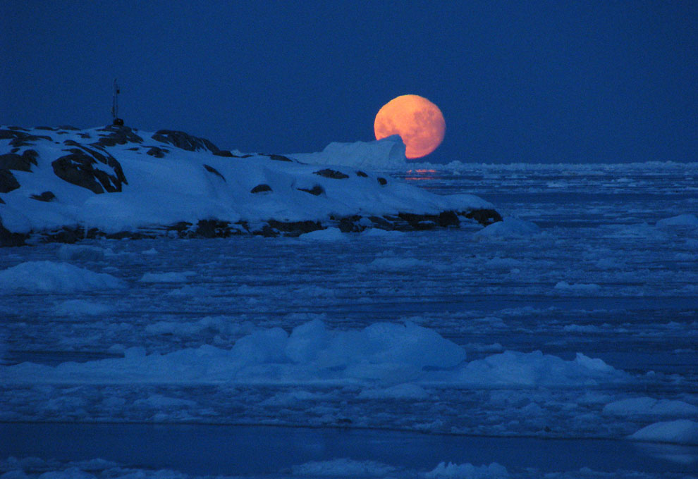 детей взрослых южный полюс зимние фотографии поэтому