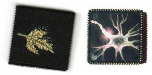 Картины на микрочипах