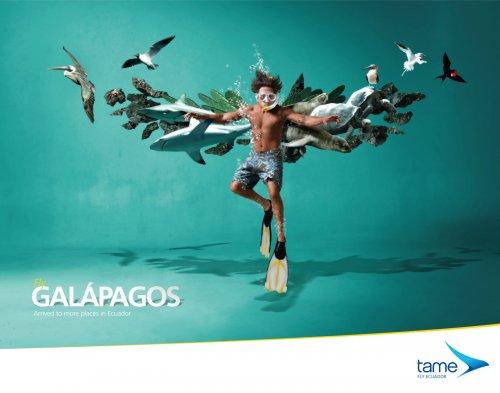 Рекламные постеры компании Tame Ecuador Airlines
