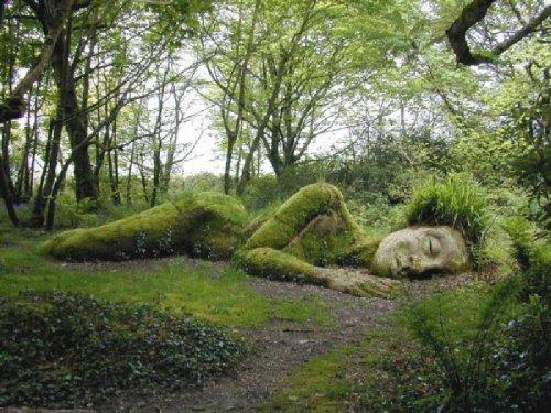 Популярные сады в Хэлигане