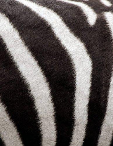 Природная текстура шкур животных