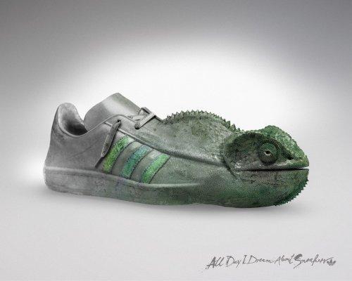 Рекламные постеры от Adidas