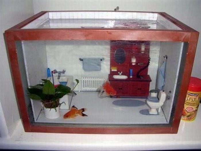 Домик-рыбка своими руками