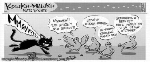 Комиксы про кошек