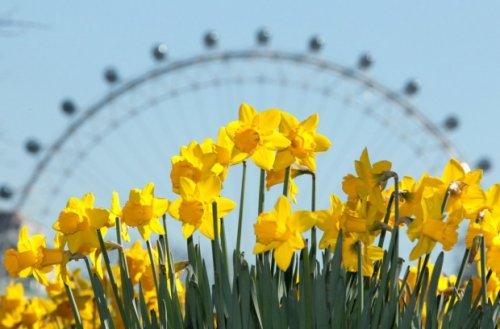 Весна пришла!!! ))