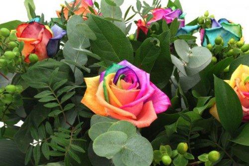 Радужные цветы