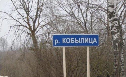 Смешные надписи на знаках