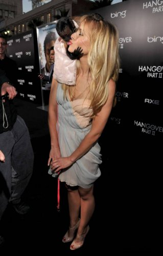 Взрослый поцелуй обезьянки с актрисой Kristen Bell