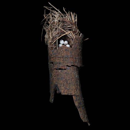 Птичьи гнезда от Шарон Билс