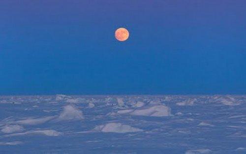Фотографии арктической экспедиции