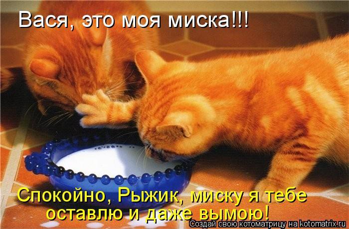 http://www.bugaga.ru/uploads/posts/2011-07/1310084147_kote-20.jpg