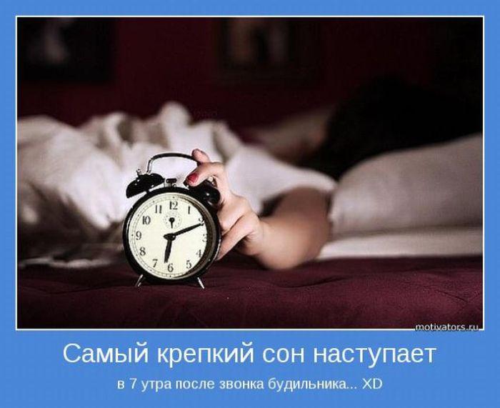 статус высплюсь