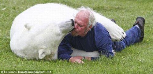 Дружба с белой медведицей