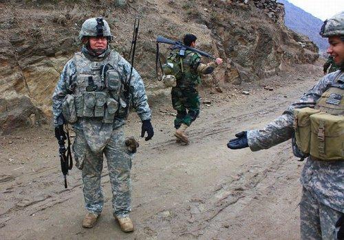 Солдаты и собаки