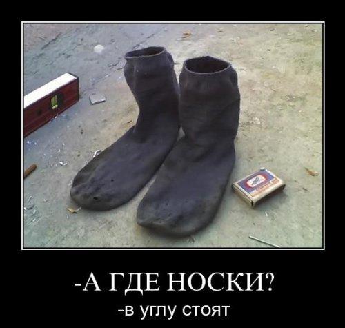 Энциклопедия грязных носок