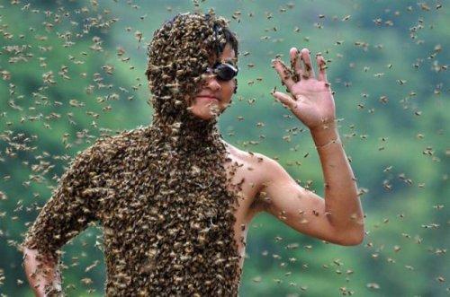 Костюм из 26 кило пчел