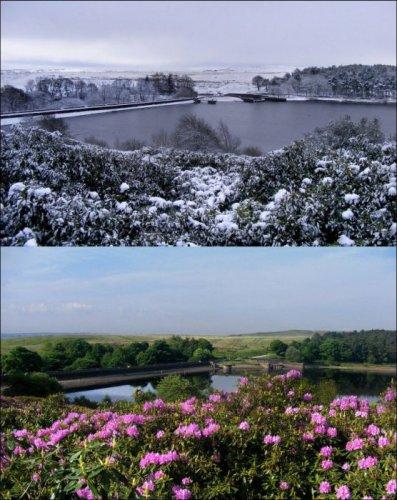 Фотографии зима-лето