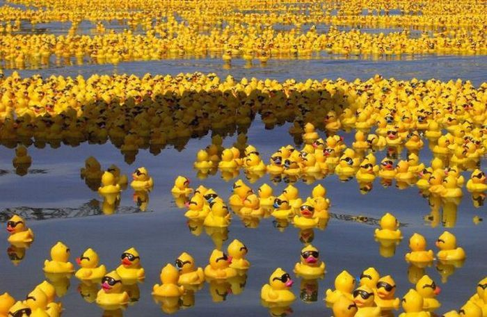 Коллекция прикольных картинок: www.bugaga.ru/jokes/1146728176-kollekciya-prikolnyh-kartinok.html