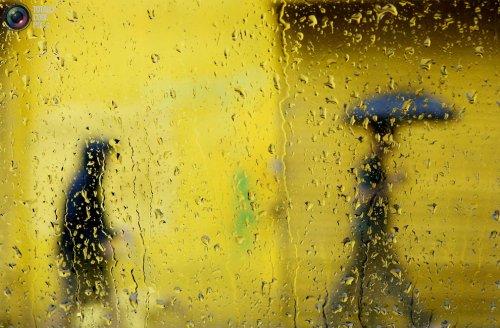 Фотографии в желтых тонах