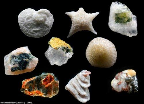 Как выглядит песок под микроскопом?
