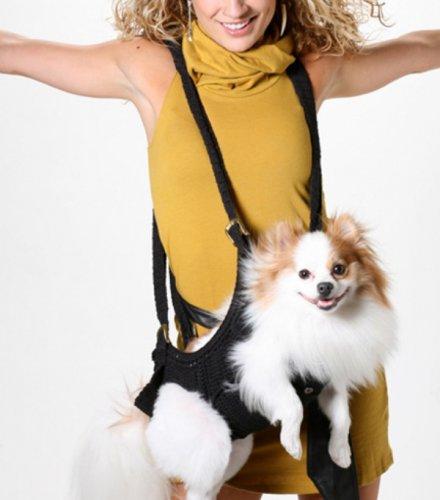 Собаки окончательно становятся аксессуаром: теперь их можно носить...