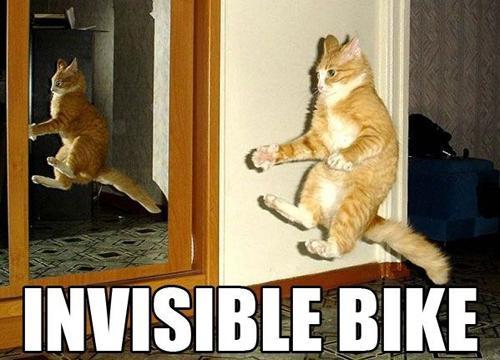 Котэ и невидимые вещи