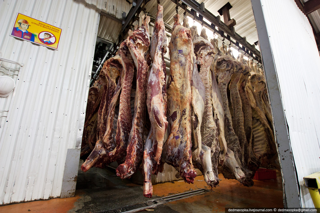 Как сделать шаурму из мяса