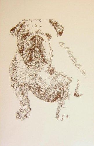 Необычные портреты собак