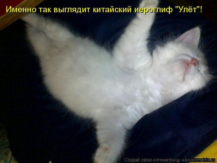 http://www.bugaga.ru/uploads/posts/2011-10/1318575136_2.jpg