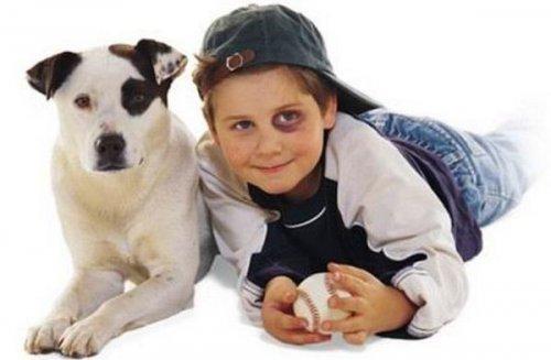 Детишки и собаки