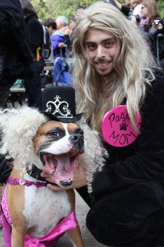 Лучшие костюмы на параде собак в Нью-Йорке