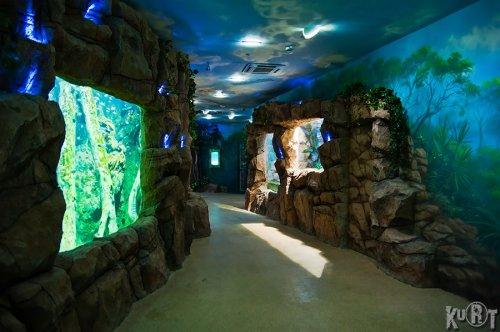 Первый московский океанариум