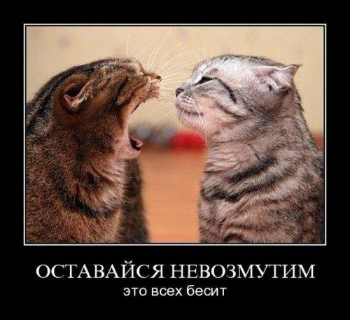 http://www.bugaga.ru/uploads/posts/2011-11/thumbs/1321000987_demo-10.jpg